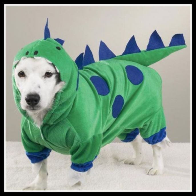 Cute Puppy costume