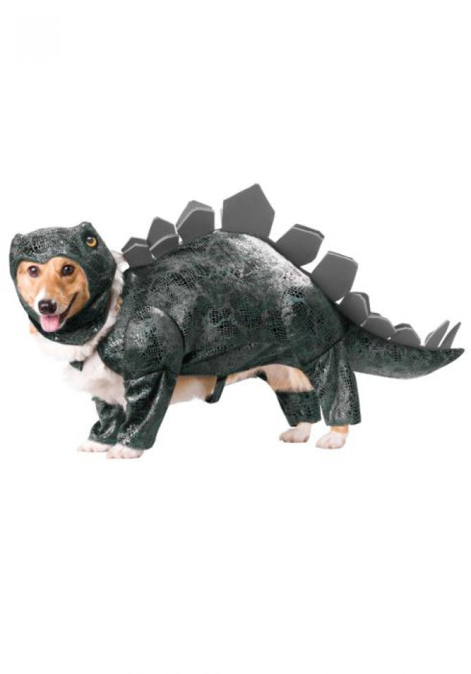 Dinosaur Doggy