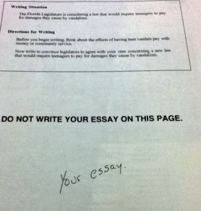 Your Essay