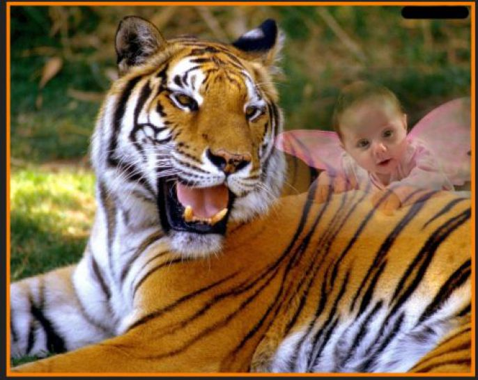 Baby Ferry and Tiger