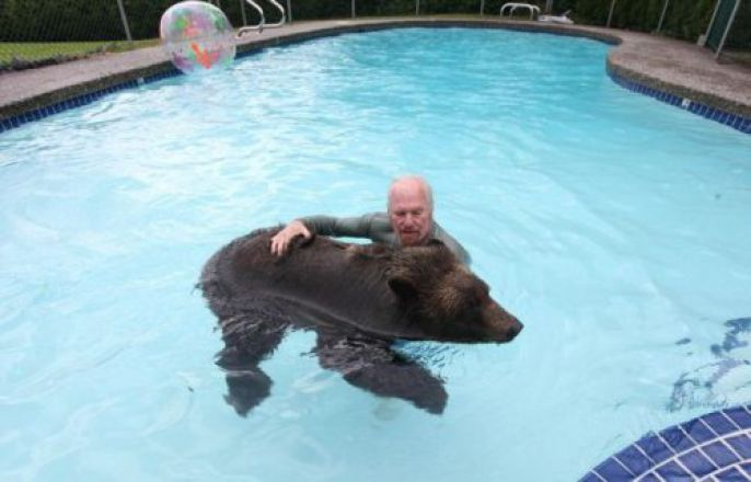 Swimming with his bear