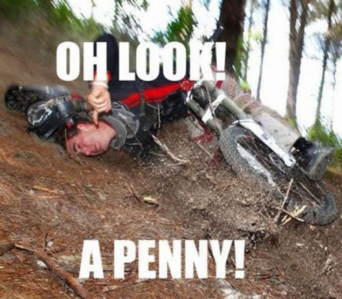 Look a Penny