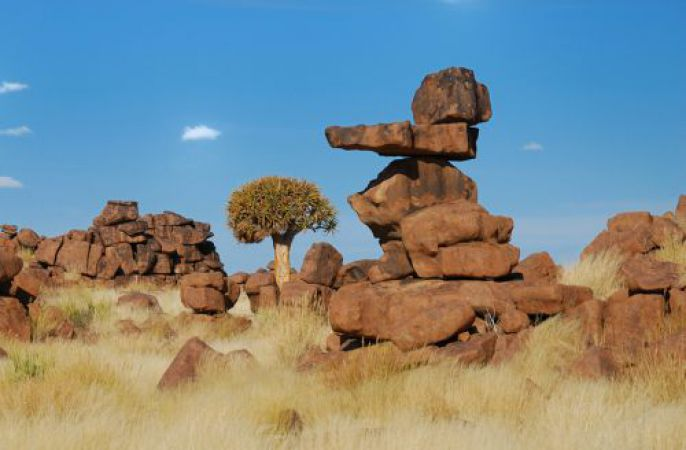 Tree and balanced Rocks