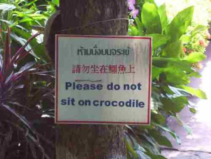 No Sitting on crocodiles
