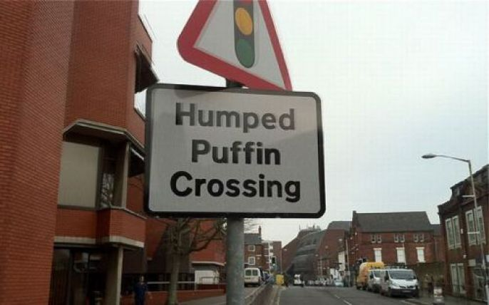 Puffin crossing