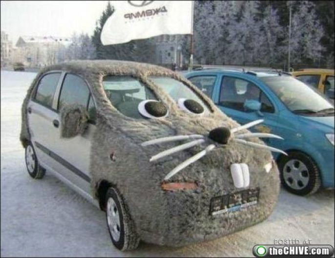 Creative Rat Car