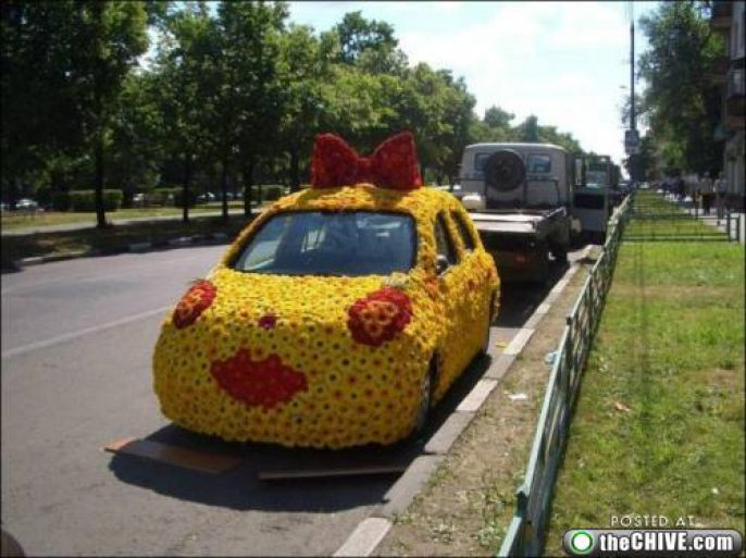 Creative Bow Car