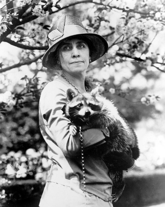 Grace Coolidge with a raccoon
