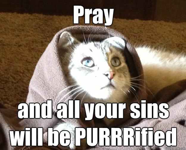 Best of the Kitty Jesus Meme от Helen за 03 oct 2012