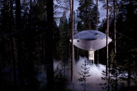 Check Out These Amazing Tree Hotels.