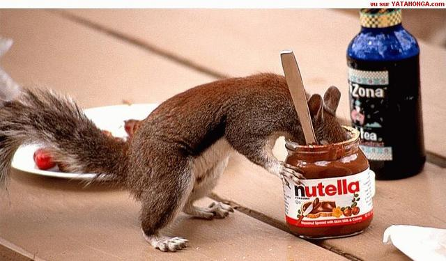 How to use Nutella от mick за 11 oct 2012