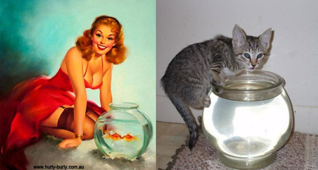 Pin-up Cats