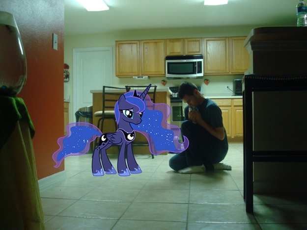 Lonely Bronies Found Photoshop. This is What Happened от Kaye за 08 nov 2012