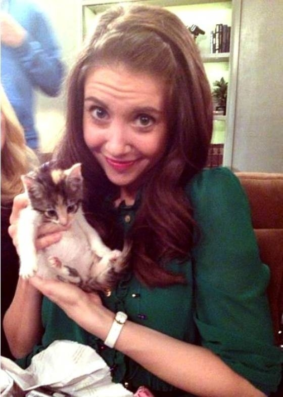 Alison Brie Holding A Kitten. That Is All. от mick за 12 nov 2012