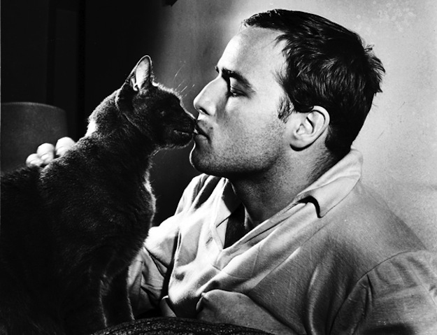 Is Marlon Brando The Hottest Man Ever?