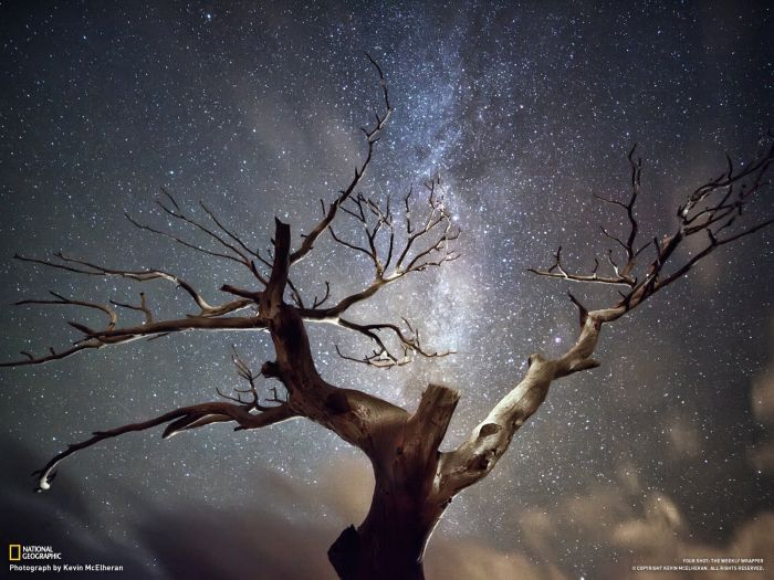 Best National Geographic Photos of November 2012 от Helen за 20 nov 2012
