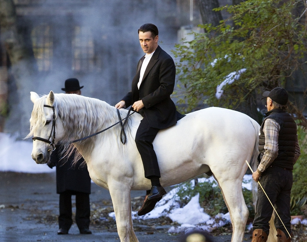 Colin Farrell Looking Glorious On A White Stallion