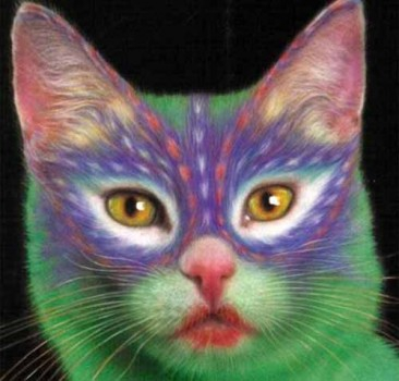 Colourful Cats - The Art Of Painted Kitties  от Veggie за 26 nov 2012