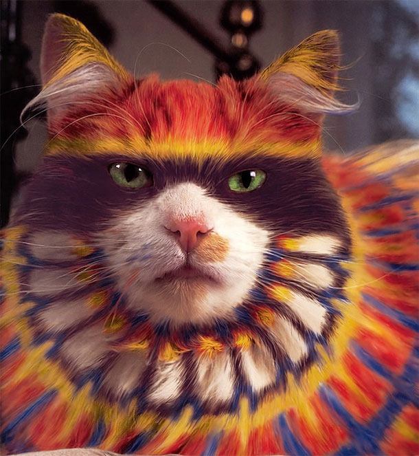 Colourful Cats - The Art Of Painted Kitties