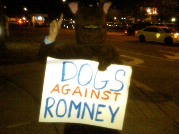 Best Protest Signs Of 2012