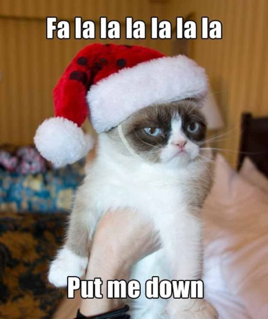 Grumpy Cat Christmas