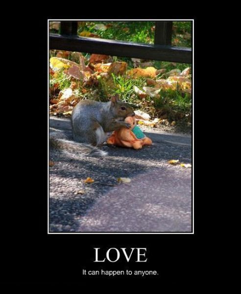 Demotivators Picdump от Helen за 26 dec 2012