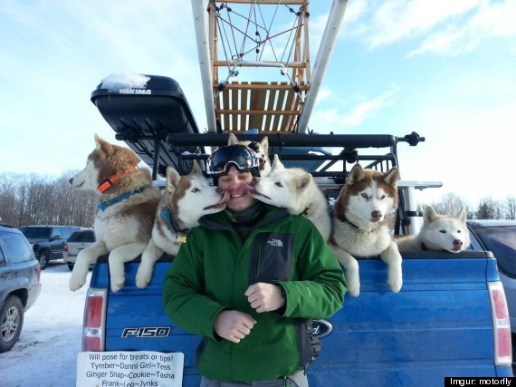 Sled Dogs Melt More Than Just Snow