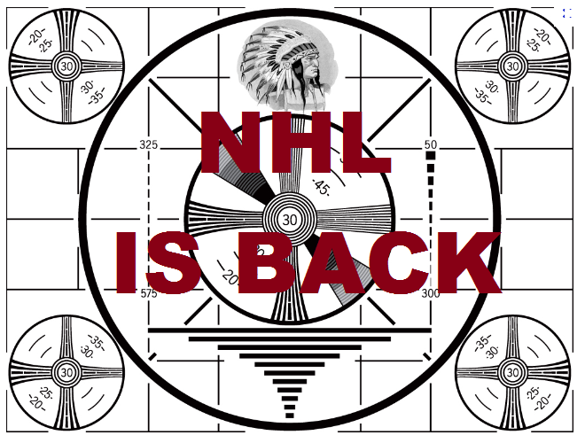 NHL Strike is OVER! We can all Stop watching Pro Poker Now!
