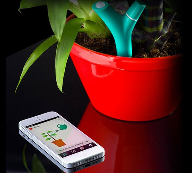 Flower Power Keeps You and Your Plants in Sync!