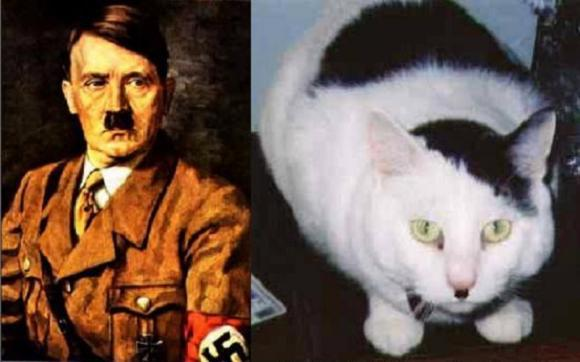 Hitler, Lenin, and Other Bad Kitties от Marinara за 16 jan 2013