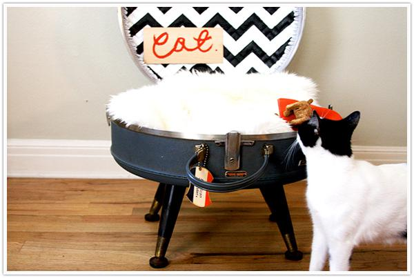 Fancy Cat Beds You Can Make Yourself