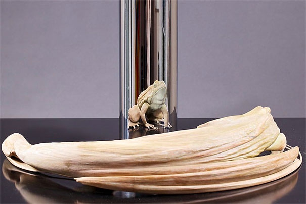 Incredible Anamorphic Sculptures by Jonty Hurwitz