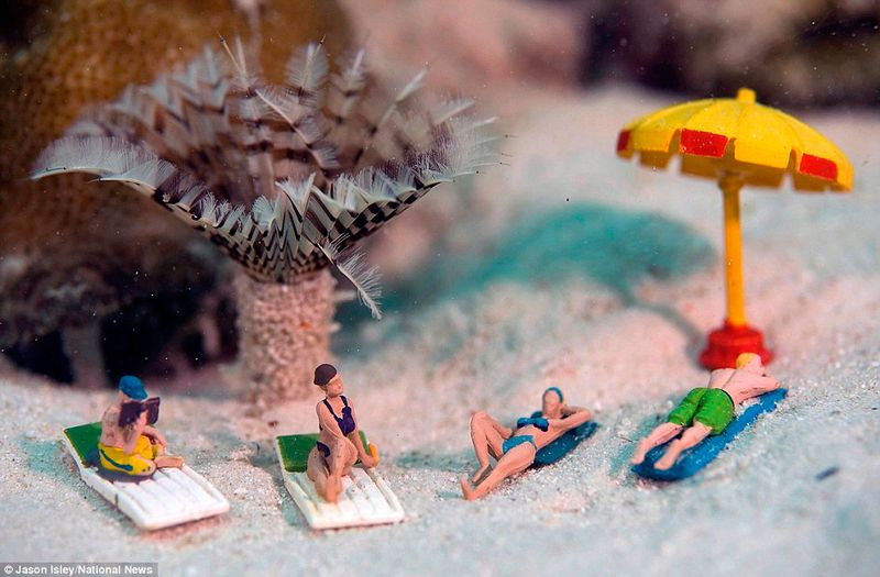 Underwater Miniatures Make for Hilariously Creative Scenes
