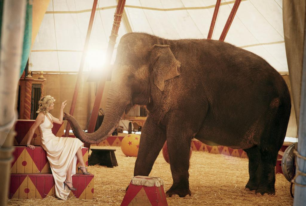 Reese Witherspoon + Elephant