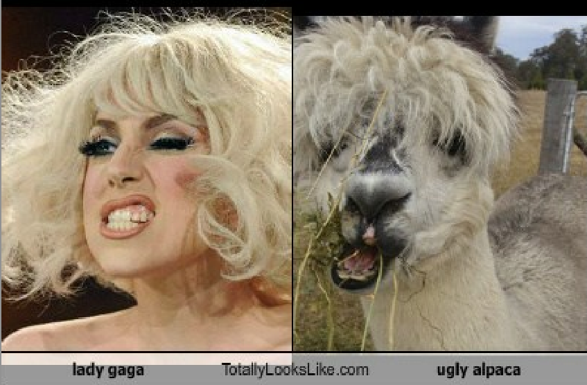 Gaga's Ugly Pics - Somebody Had to Do It