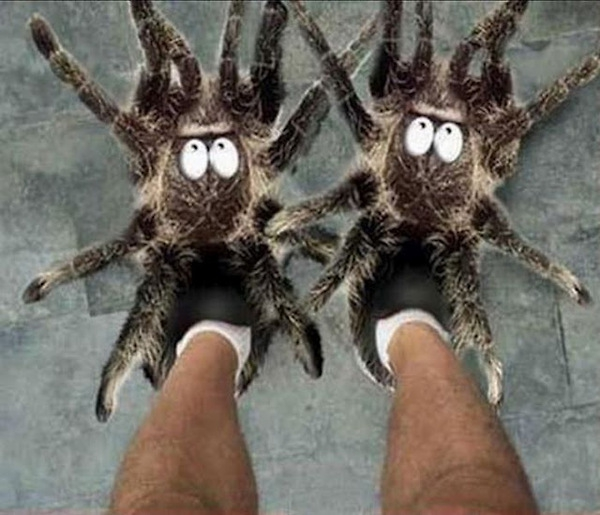 Cool Crazy Slippers!