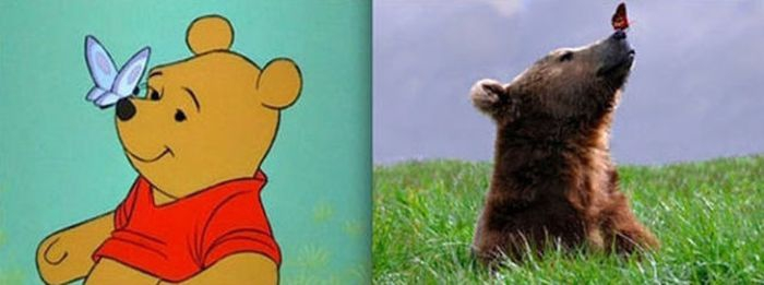 Animals. Animation vs Real Life