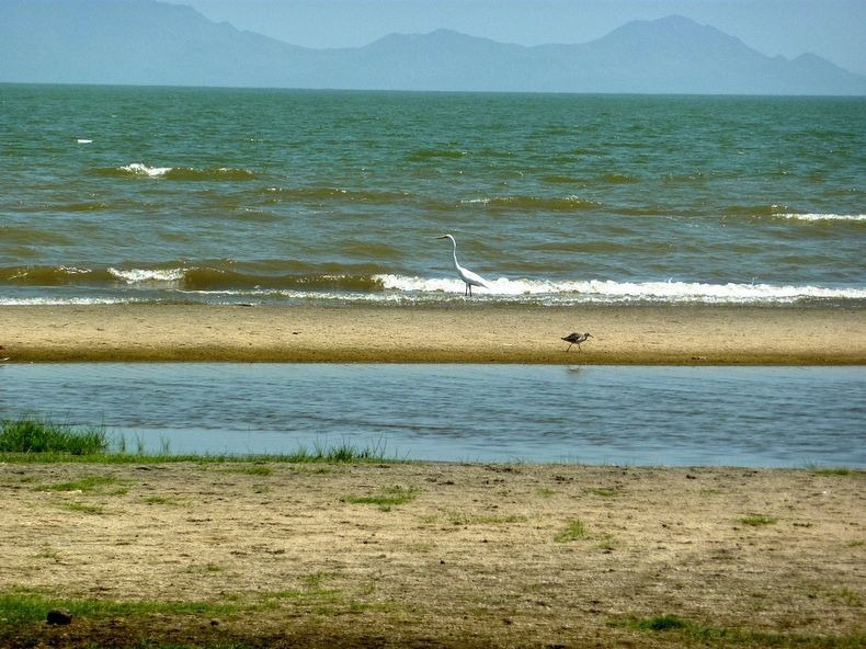 Lake Turkana, World's Largest Desert Lake