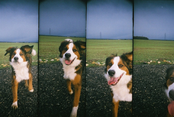 Capturing Simple Moments of Life in Four Frames
