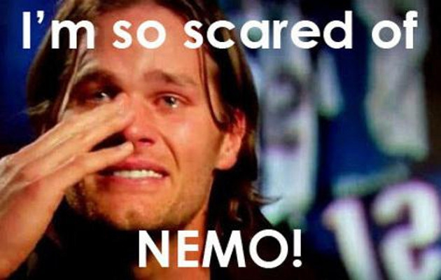 The Best Nemo Blizzard Memes (and GIFs!)