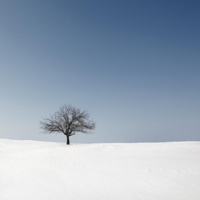 Inspiration from Andrey Belkov's Minimalistic Winter Photography