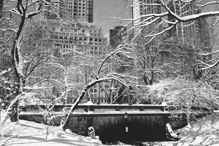 Beautiful Black and Photos of Central Park After the Blizzard