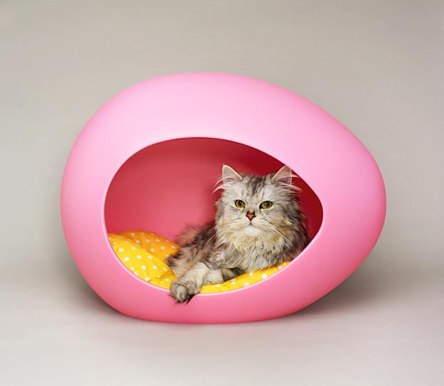 Treat Your Pet with a Nice Pod for This Valentine!