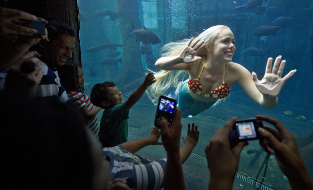 Real-Life Mermaid