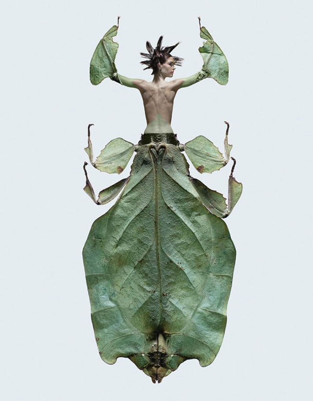 Stylish Models Twisted Into Creepy Crawly Insects
