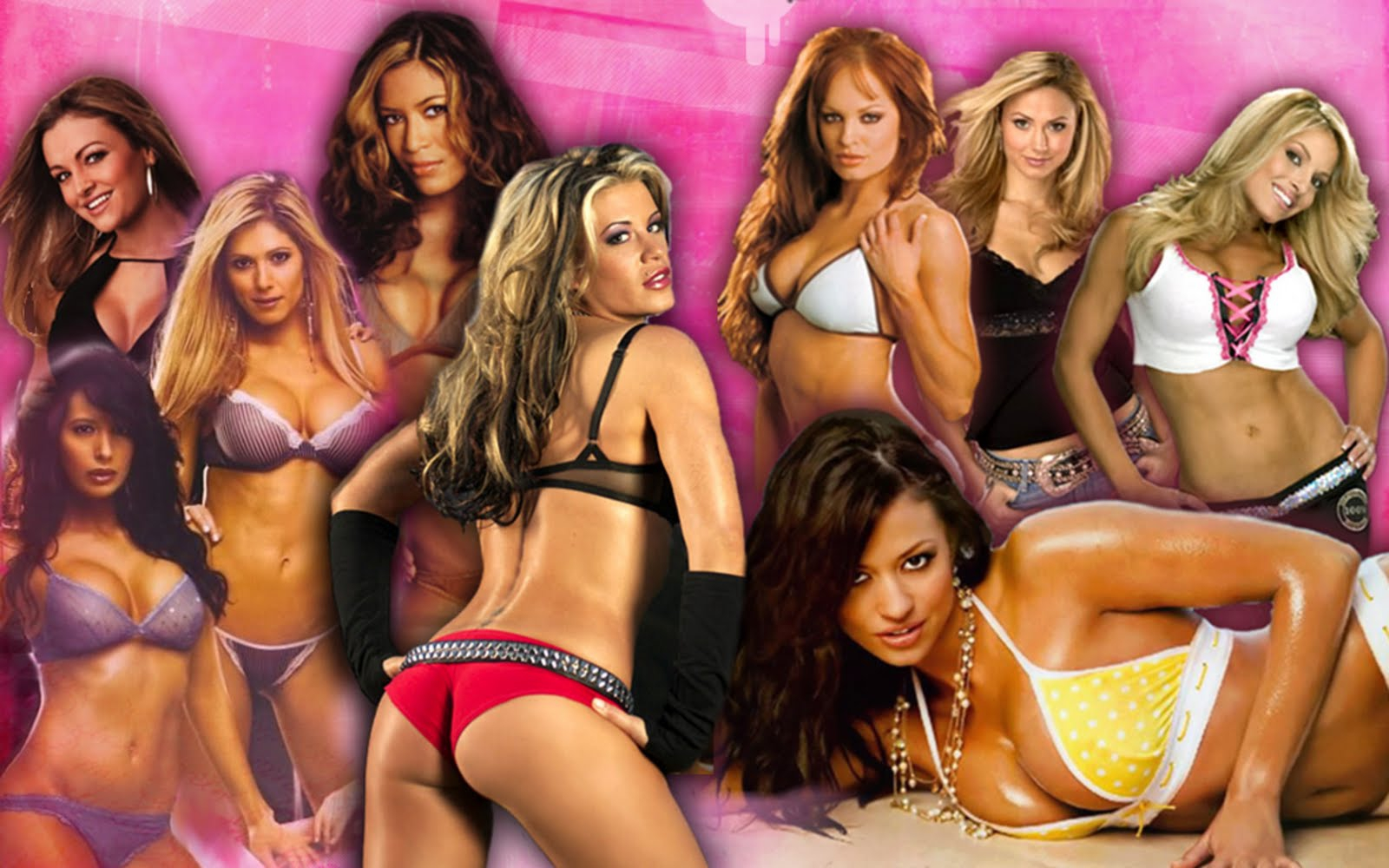 Check out The Sexy Women Wrestlers of the WWE