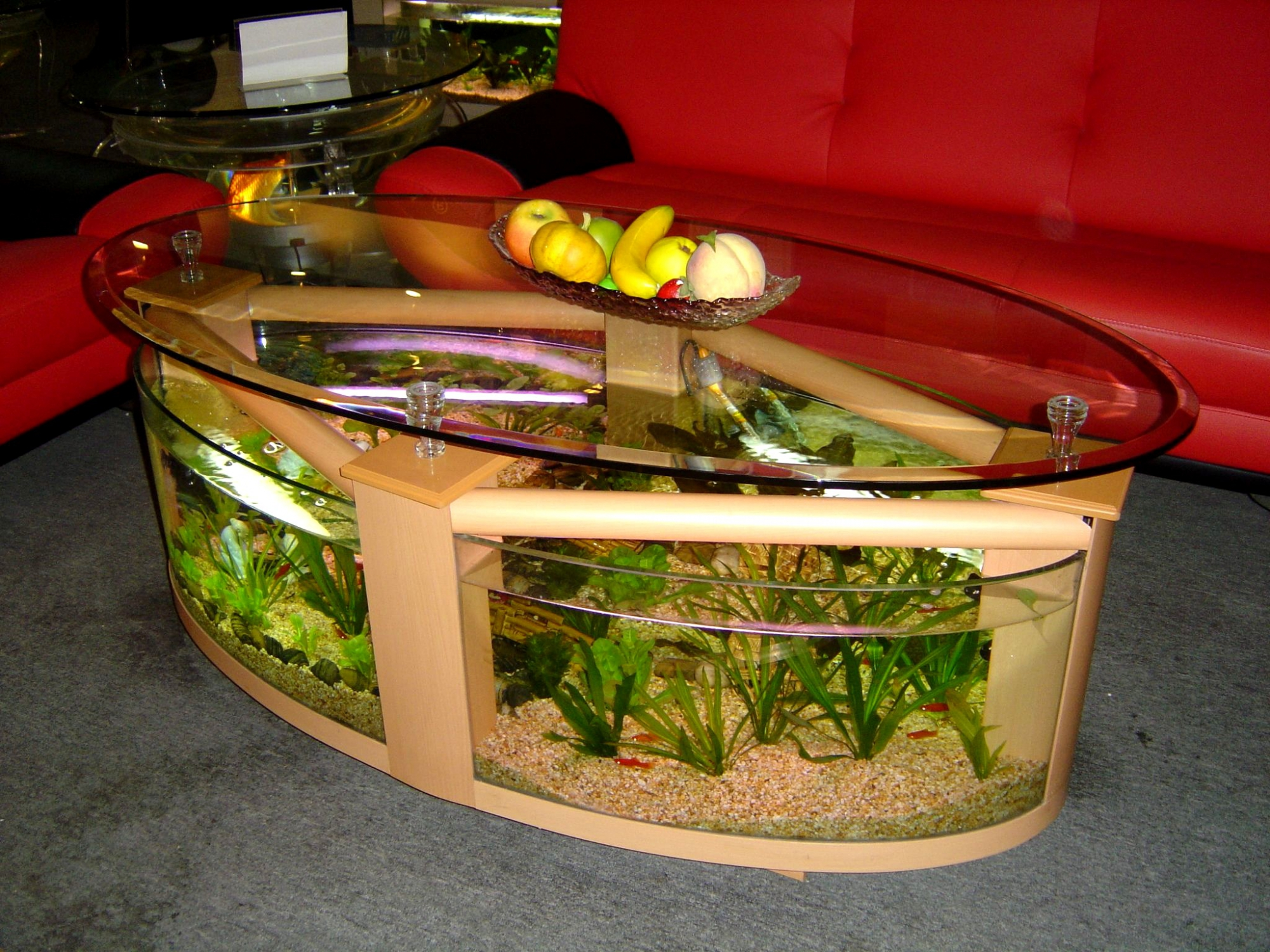 Coolest Aquariums EVER!