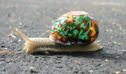 Snail Graffiti, No One Will Blame You