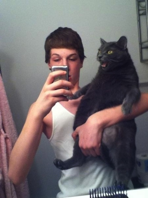 This cat who is tired of taking selfies with you.