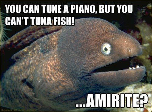Funny All Pun Intended Photos